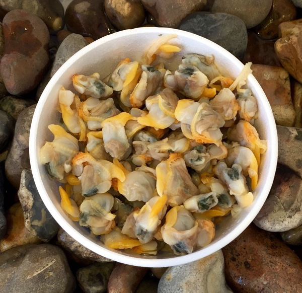 whelks and cockles relationship quiz
